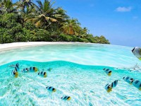 clearest-waters-to-swim-in-before-you-die-2
